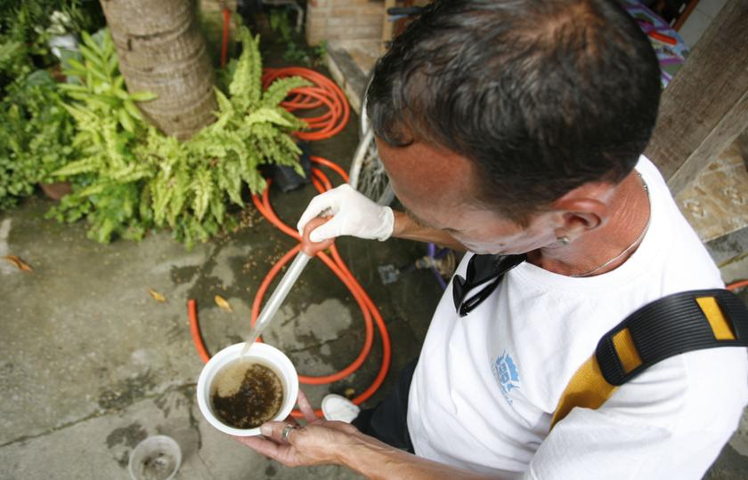 Conscientização da população marca dia D de combate a Dengue