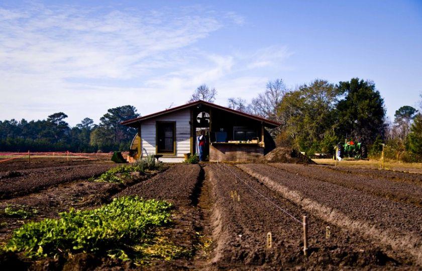 Programa de seguro rural recebe reforço de R$ 100 milhões